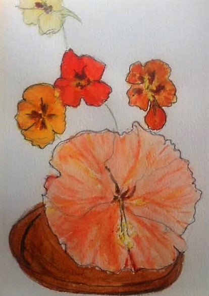 Hibiscus and nasturtiums