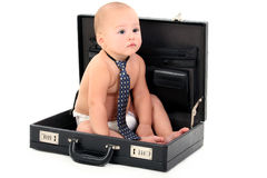 adorable-baby-wearing-diaper-tie-sitting-briefcase-188809