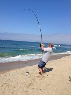 catch-fish