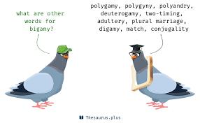 bigamy synonyms