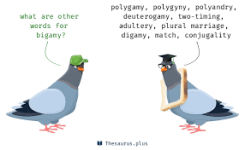 bigamy synonyms