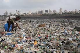 plastic scavenge