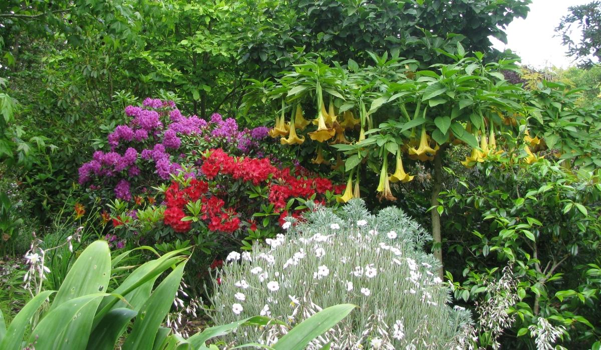 The dangers lurking in thegarden…